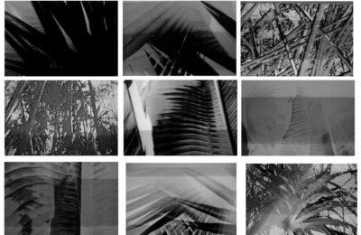 3 Years of Echo Bücher: Tristes Tropiques – Andrew Pekler